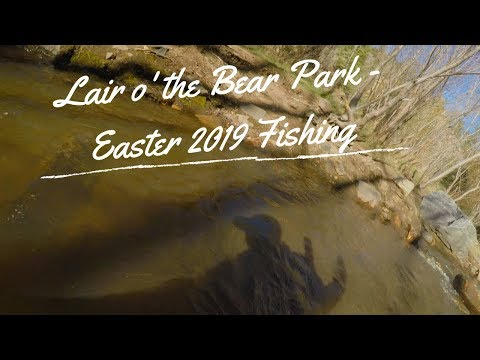 Fisher Of Fish - Lair O' The Bear Park - Easter Fly Fishing Bear Creek