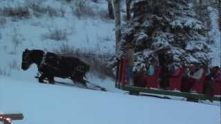 """Horse Drawn Sleigh Rides and Dinner with Bearcat Stables Vail and Beaver Creek, Coloroado."""