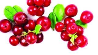 КЛЮКВА ПОЛЬЗА И ВРЕД | клюква давление, клюква самая полезная в мире ягода?