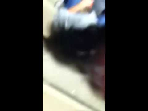 China Grove Middle School Harlem Shake