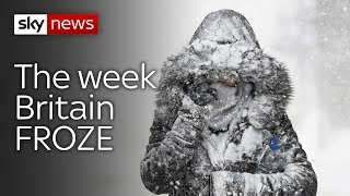The week Britain froze