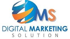 Digital Marketing Service Overview: Digital Marketing Solution (Pvt.) Ltd.