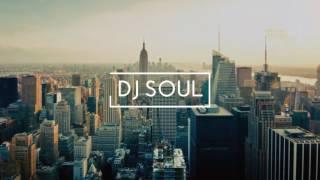 Radha- jab Harry met sejal (DJ SOUL REMIX)