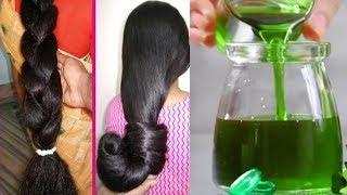 தினசரி உங்கள் முடி 1 இன்ச் நீளம் வளர இதை தடவவும் | Non Stop Hair Growth