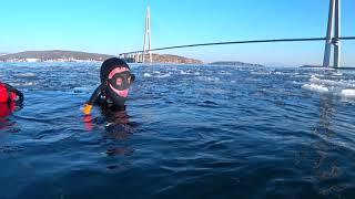 Собираем морские гребишки устрицы Но такого мы не ожидали