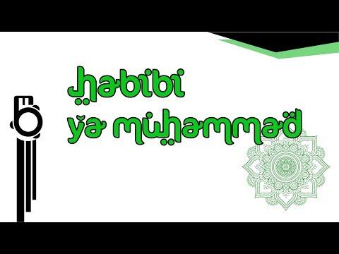 Habibi Ya Muhammad - Karaoke | Banjari Cover