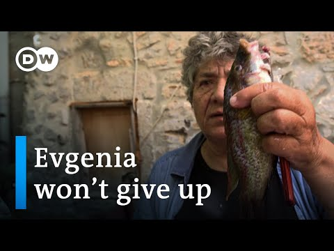 No more fish - Empty Net Syndrom in Greece | DW Documentary