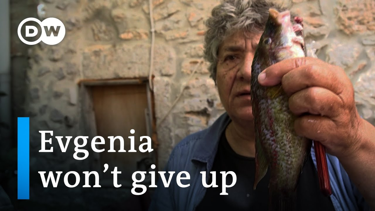 No more fish - empty net syndrome in Greece   DW Documentary