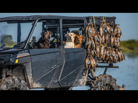 100 Teal in an Hour on Opening Day!! (Incredible Texas Duck Hunting)