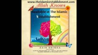 Allah knows Zain Bhikha Flowers Are Red feat. Dawud Wharnsby Ali and Muhammad Bhikha
