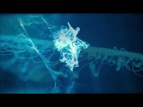 Santiago Niño - Eternal Atoms [video]