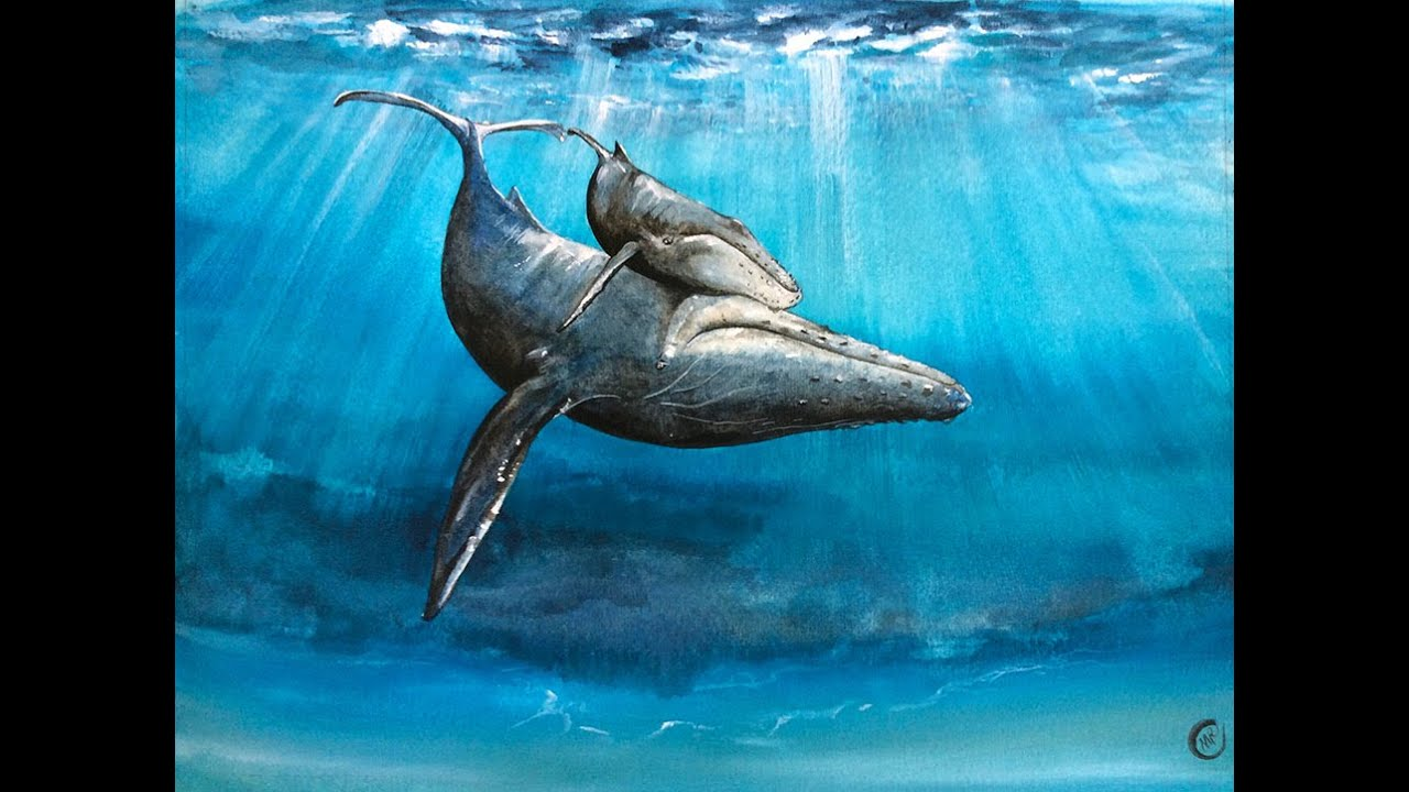 Watercolor Underwater Whale Painting Demonstration - YouTube