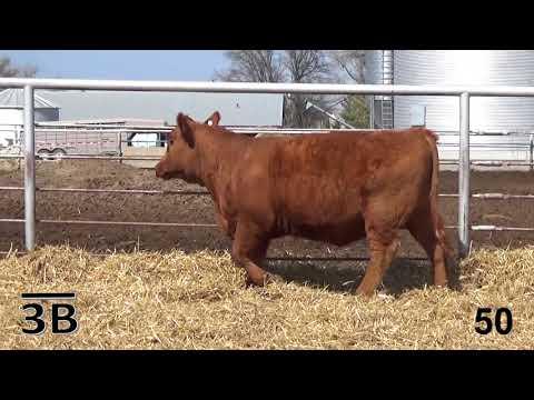 Becker Farms Tag 1065