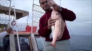 Balık avı dediğin böyle olur... büyük balık avları by Kefalos