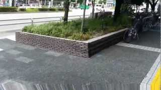 Bike lane and parking in Nagoya