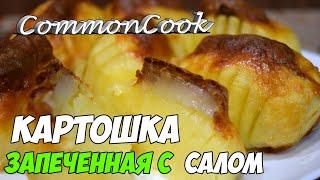 Картошка запеченная с салом.  Картофель гармошкой с салом и сыром запеченный в духовке
