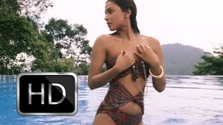 Priyanka Chopra Hot Bikini Scene In Don HD