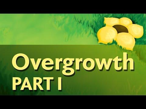 Overgrowth - Flowerfell [1/3]