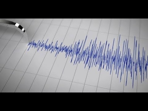 زلزال عنيف يضرب نيوزيلندا  - نشر قبل 2 ساعة