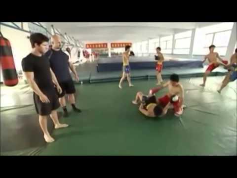 The Art of Sanda Kung Fu thumbnail