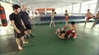 The Art of Sanda Kung Fu