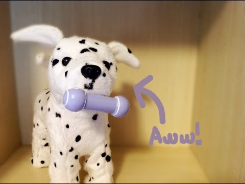 AG Dalmatian Puppy Review