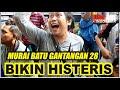 Murai Batu  Opung  Milik Ap Manurung Bikin Histeris  Mp3 - Mp4 Download