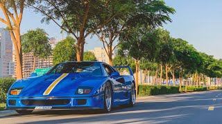 THE Azzurro Dino Ferrari F40 & A Surprise McLaren Senna!!