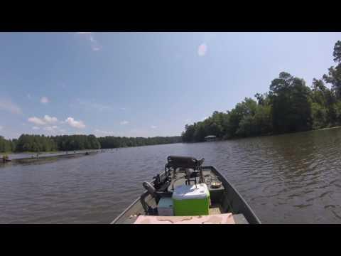 Stevens Creek South Carolina