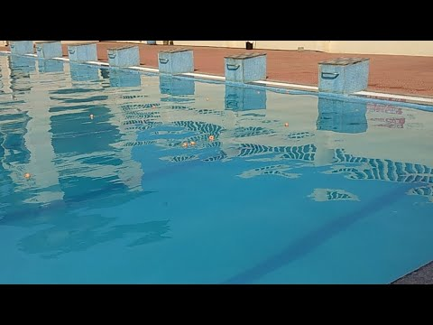 Swimming Competition Feb 2018