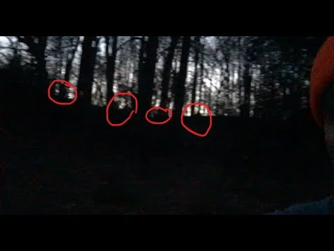 Bigfoot Sasquatch- Surrounded By Three If Not Four While Night Hunting WITHOUT A Flashlight!