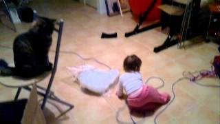 Baby laughing hysterically at cat and dog playing