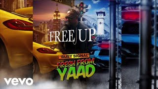 Busy Signal - Free Up (Audio)