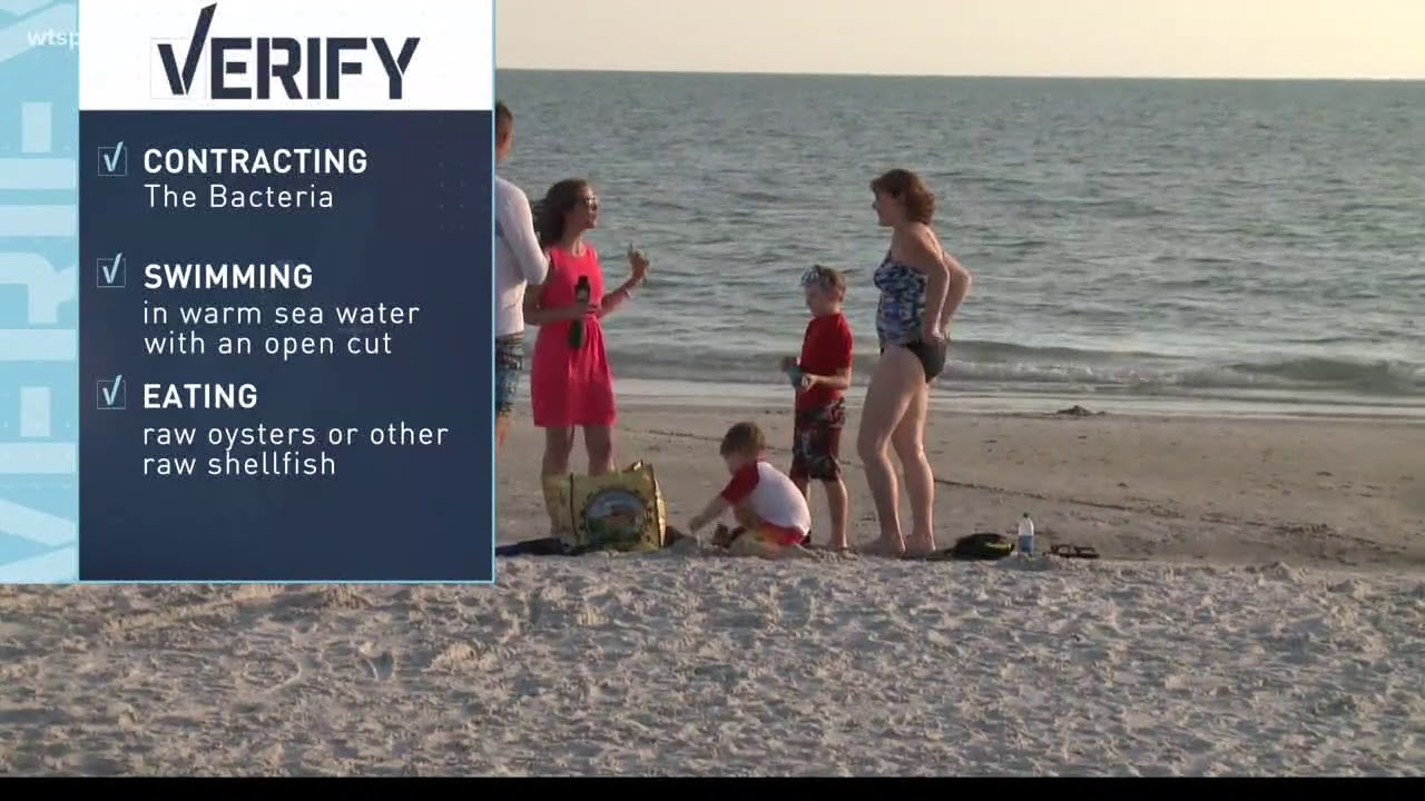 VERIFY: Is there flesh eating bacteria in the gulf waters?