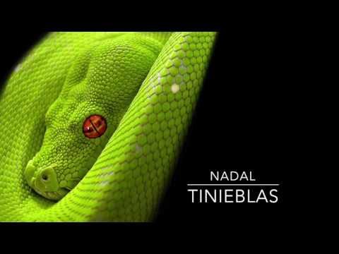 Tinieblas tagged videos on VideoHolder