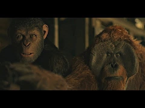 Finding Nova Scene | War For The Planet Of The Apes (2017)#LOWI