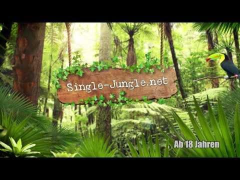 Single jungle kostenlos