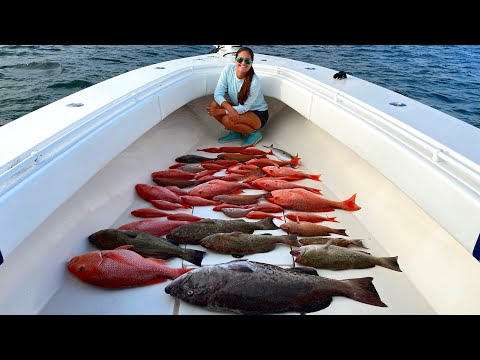 INSANE Offshore Fishing in Gulf of Mexico! Catch Clean & Cook Red Snapper!