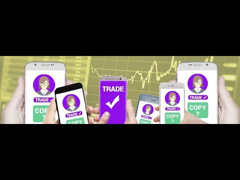 forex-trading-copy-trading-setup