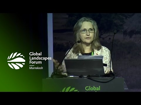 Anne Larson: What we know about global climate goals and local realities – GLF 2016 Marrakesh