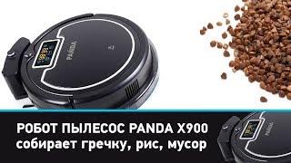 обзор робот пылесос Panda X900 (Панда X900) и сравнение с пылесосом Iclebo arte. Купить Panda X900