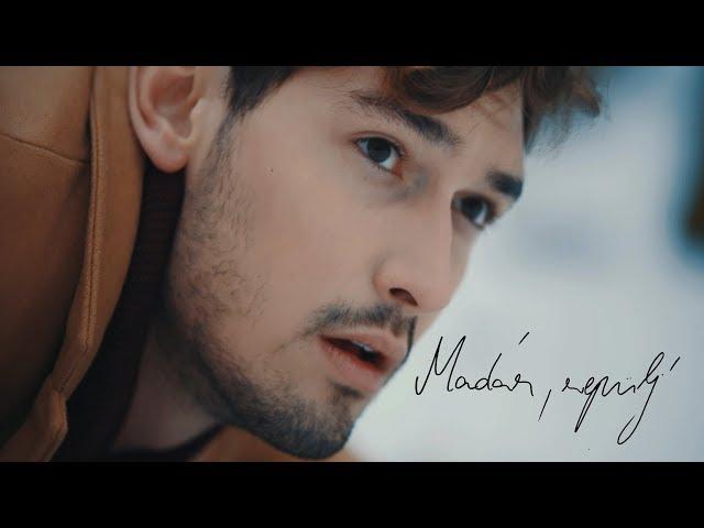SZEKÉR GERGŐ - MADÁR, REPÜLJ! - OFFICIAL MUSIC VIDEO