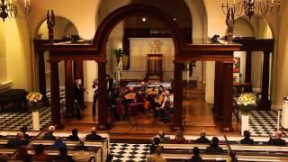 ACRONYM Live: Antonio Bertali -- Sonata a 4 in d (passacaglia excerpt)
