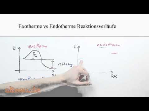 Exotherme vs Endotherme