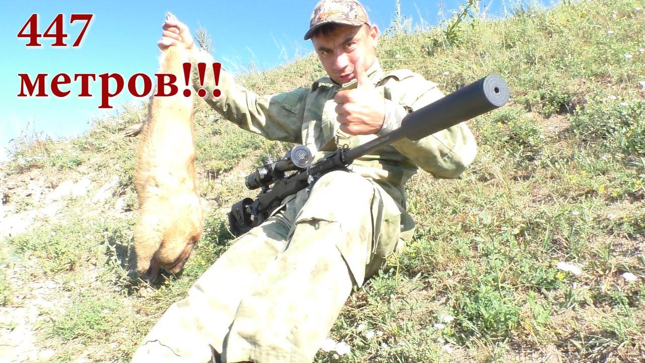 Охота на Сибирского сурка летом 2020 года!!! Выстрел на 447 метров!!!