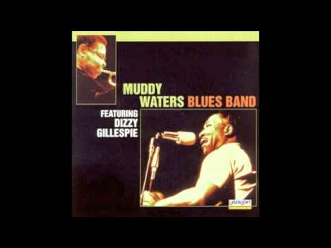 Muddy Waters Live Featuring Dizzy Gillespie