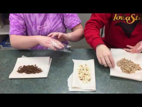 sedimentary rock lab instructions