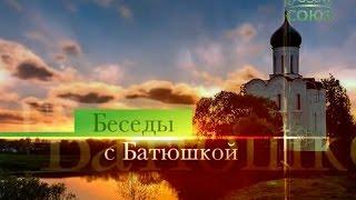 Протоиерей Димитрий Смирнов. Беседы с батюшкой (ТК «Союз», 29 января 2017 г.)