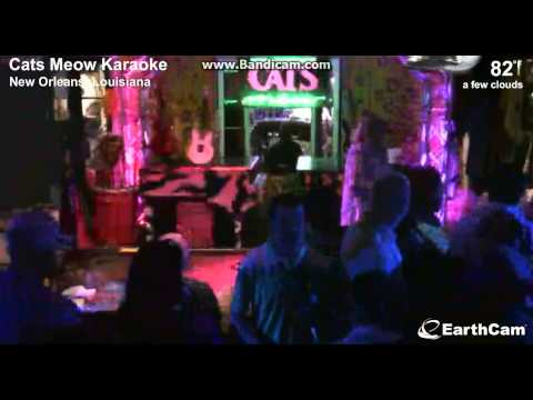 Earthcam - Cats Meow Karaoke Song Uptown Funk