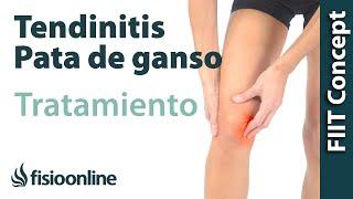 La tratamiento en espinilla tendinitis la de